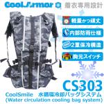 cs303