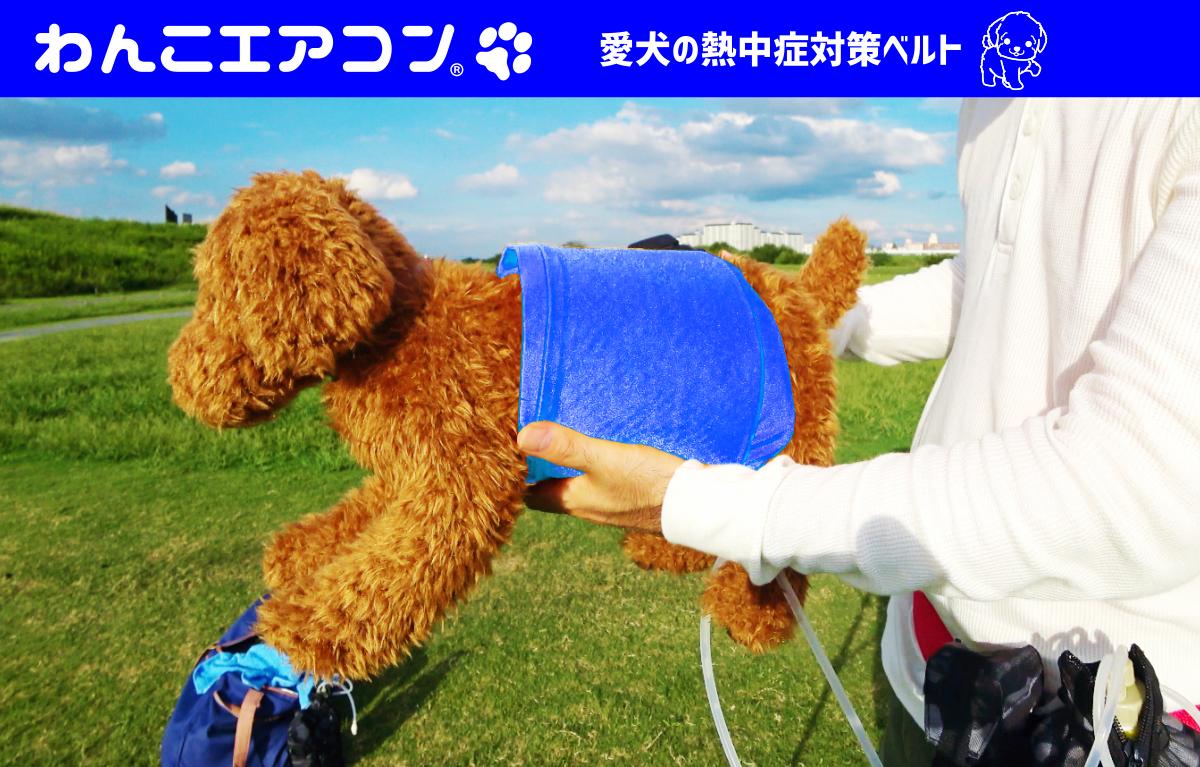 チョー快適 犬用エアコン わんこエアコン