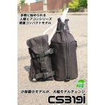 cs319i