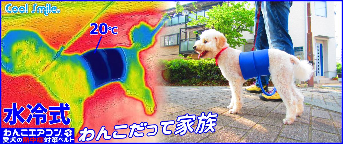 わんこエアコン NHK まちかど情報室 2017年6月15日 オンエア